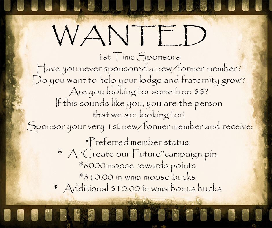 Wanted…